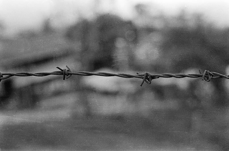 Brayan Barbed Wire-final