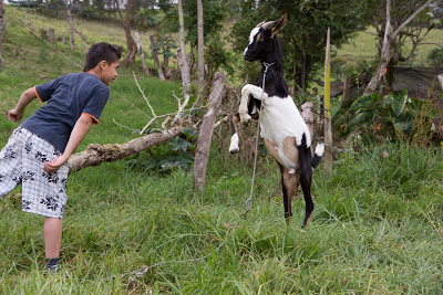 Erik And Goat